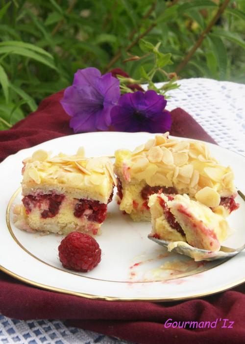 framboise,framboisier,gâteau aux framboises,crème au beurre