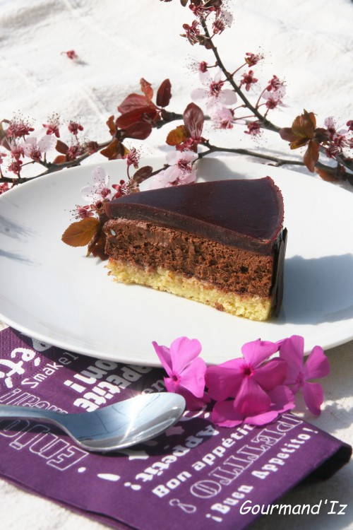 entremet chocolat et cassis, entremet chocolat Ig bas,