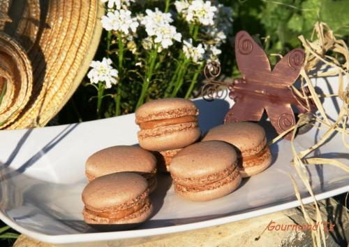 macarons, macarons avec blancs d'oeufs déshydratés, macarons avec blancs d'oeufs séchés, ganache praliné, recette facile de macarons