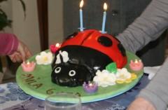 cake design,coccinelle,gâteau d,ladybird cake