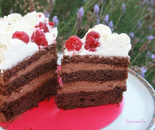 molly cake, chocolat, mousse chocolat, naked cake chocolat, framboises