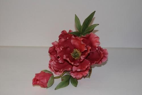 fleur, fleur en sucre, cake design, pivoine
