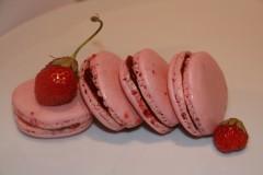 macarons,coques,encyclopédie du chocolat,four,meringue italienne