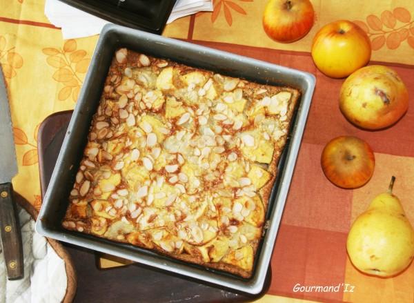 clafoutis sans gluten, clafoutis pommes, poires, clafoutis poire, clafoutis à la farine de chataigne