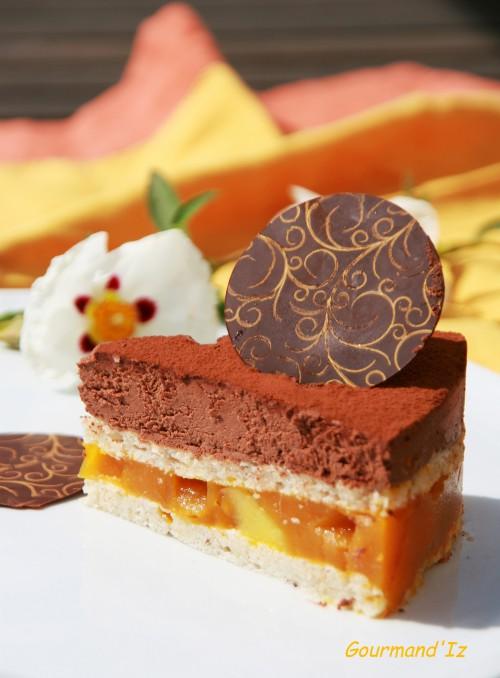 entremet chocolat, mangue, passion, Klemanga, encyclopedie du chocolat