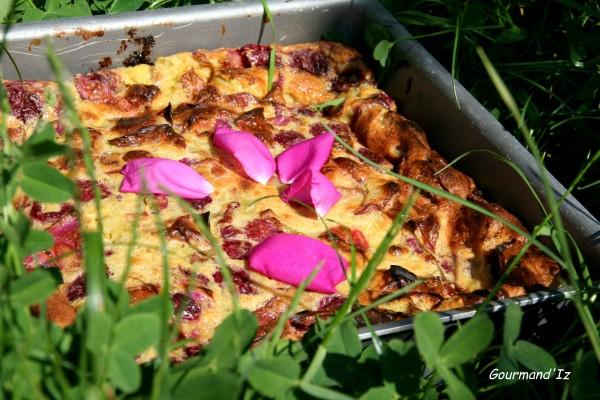 clafoutis, rhubarbe, framboise, rose